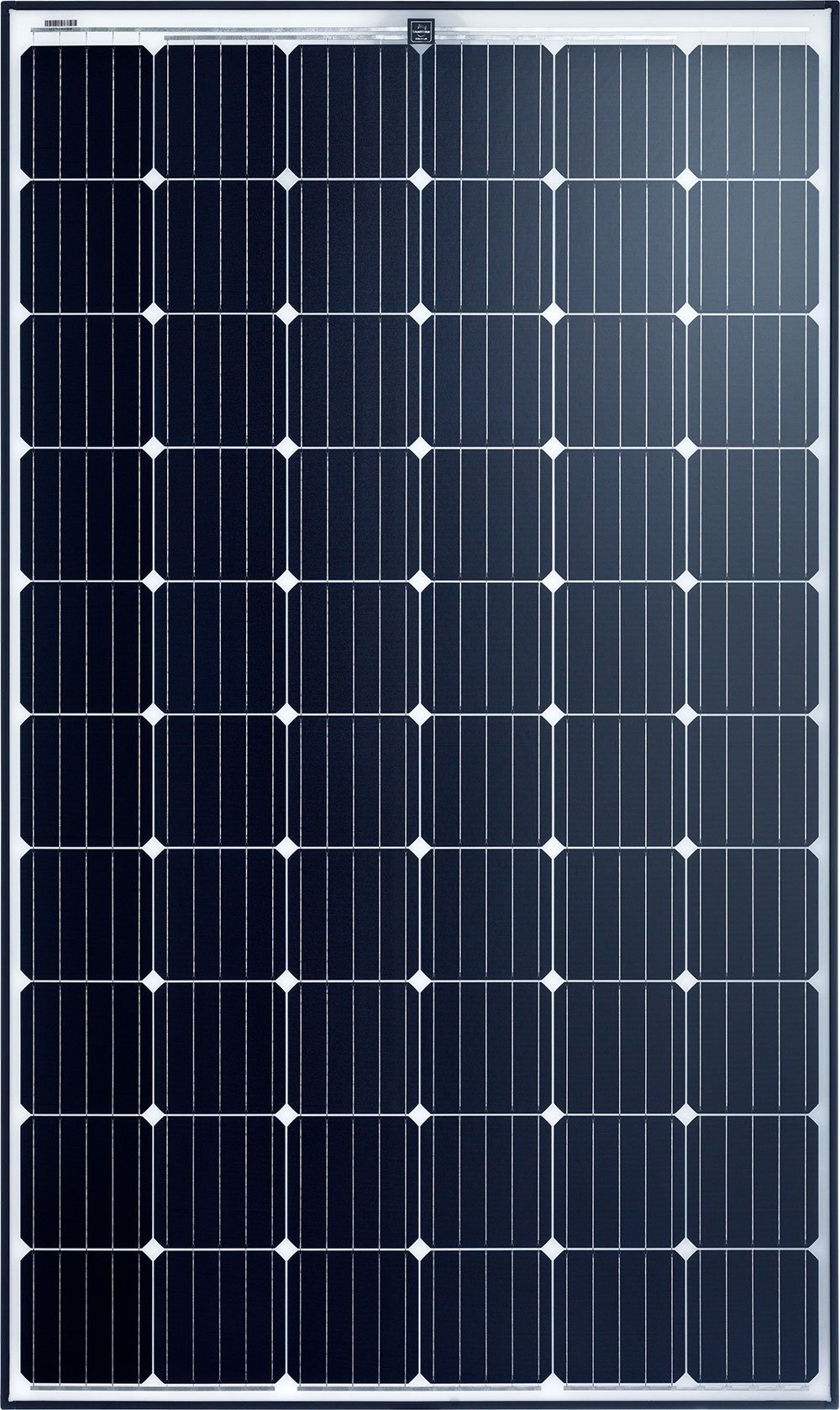 Sunmodule Bisun Protect Solar Panel by Perth Solar Warehouse