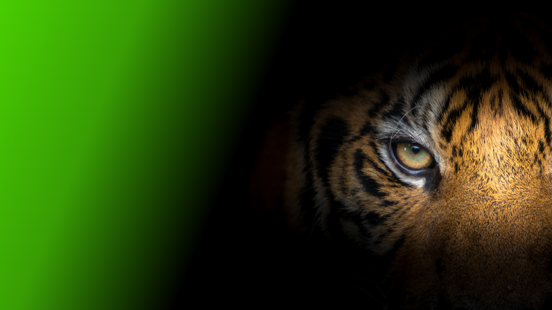 Jinko Tiger by PSW Energy